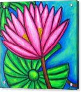 Pink Gem 1 Acrylic Print