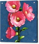 Pink Hollyhocks Acrylic Print