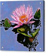 Pink Lily With Dancing Reflections Acrylic Print