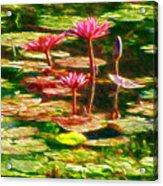 Pink Lotus Flower 2 Acrylic Print