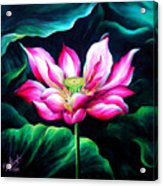 Pink Lotus From L.a. City Park Acrylic Print