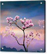 Pink Magnolia - Bright Version Acrylic Print