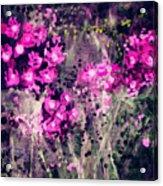 Pink Majestic Garden- Art By Linda Woods Acrylic Print
