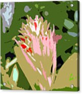 Pink On Green Work Number 6 Acrylic Print