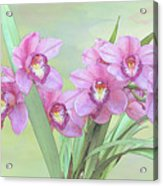 Pink Orchid Photo Sketch Acrylic Print