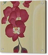 Pink Orchide In A Vase Acrylic Print