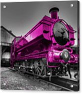 Pink Pannier  Acrylic Print