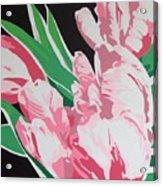 Pink Parrots Acrylic Print