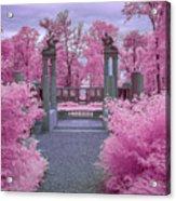 Pink Path To Paradise Acrylic Print