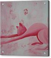 Pink Pause Acrylic Print