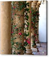 Pink Peacock Colored Bougainvillea Blossoms Climbing Pillars Photograph By Colleen Acrylic Print