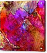 Pink Petals II Acrylic Print