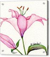 Pink Promise Acrylic Print