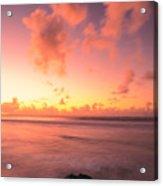 Pink Reflections Acrylic Print
