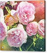 Pink Rose Artwork Acrylic Print