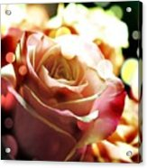 Pink Rose In Sparkling Lights Acrylic Print