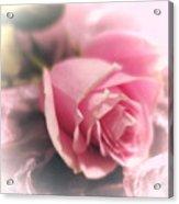 Pink Rose Macro Abstract 1 Acrylic Print