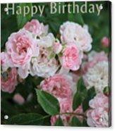 Pink Roses Birthday Card Acrylic Print