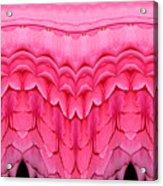 Pink Roses Polar Coordinates Effect 1 Acrylic Print