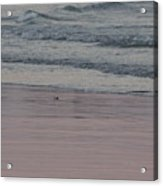 Pink Sky Reflections In The Sand Acrylic Print