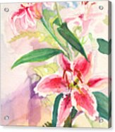 Pink Stargazer Lilies Acrylic Print