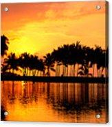 Pink Sunset And Palms Acrylic Print