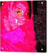 Pink Survivor Acrylic Print