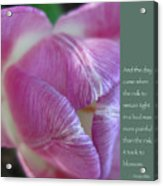 Pink Tulip With Anais Nin Quote Acrylic Print