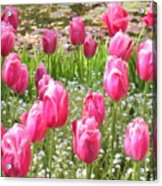 Pink Tulips By Peaceful Pond Acrylic Print