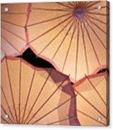 Pink Umbrellas Acrylic Print