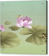 Pink Water Lily And Frog Acrylic Print