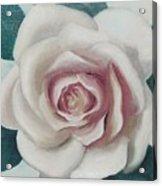 Pinky Flower Acrylic Print