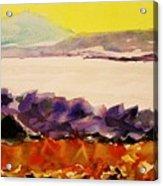 Pinnacle Mountain...arkansas River Acrylic Print