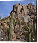 Pinnacle Peak Landscape Acrylic Print