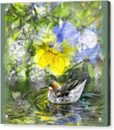 Pintail Pond Acrylic Print