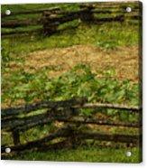 Pioneer Gardening Acrylic Print