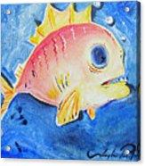 Piranha Art Acrylic Print by Joseph Palotas