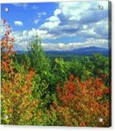 Pisgah State Park Foliage Acrylic Print