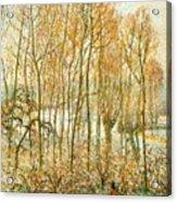 pissarro19 Camille Pissarro Acrylic Print