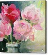 Pivoines Tricolores Acrylic Print