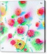 Pixie Flowers Acrylic Print