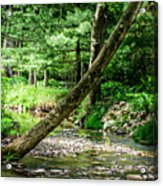 Place Of Peace Acrylic Print