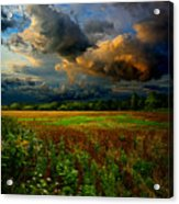 Places In The Heart Acrylic Print by Phil Koch