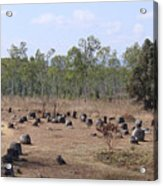 Plain Of Jars No.2 Acrylic Print