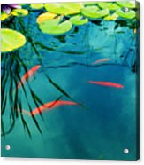 Plaisir Aquatique Acrylic Print