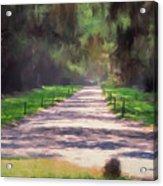 Plantation Road South Carolina Acrylic Print