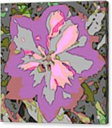 Plant Power 6 Acrylic Print by Eikoni Images