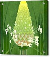 Plantain Buckhorn Print Acrylic Print