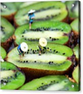 Planting Rice On Kiwifruit Acrylic Print by Paul Ge
