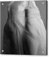 Plastic Sculpture Acrylic Print
